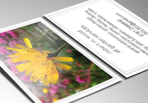 Leaflet Printing from Just-Printing